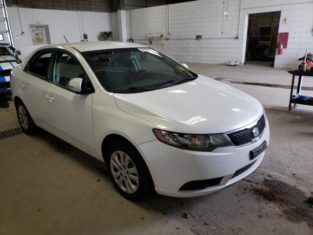 Salvage cars for sale from Copart Blaine, MN: 2011 KIA Forte EX
