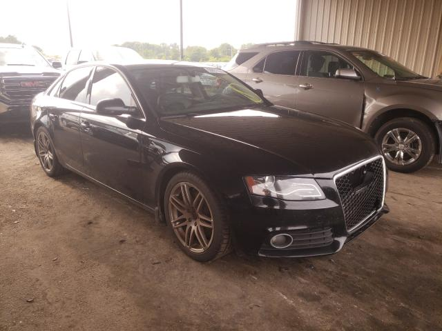 Salvage 2010 AUDI A4 - Small image. Lot 50431191