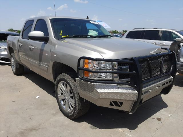 Salvage cars for sale from Copart Grand Prairie, TX: 2009 Chevrolet Silverado