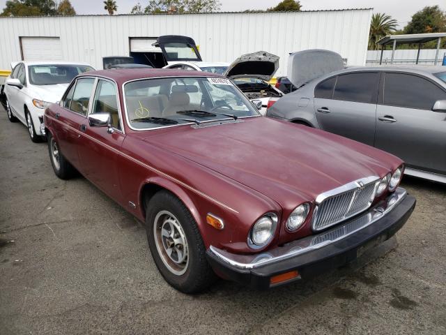 Jaguar Vehiculos salvage en venta: 1984 Jaguar XJ6