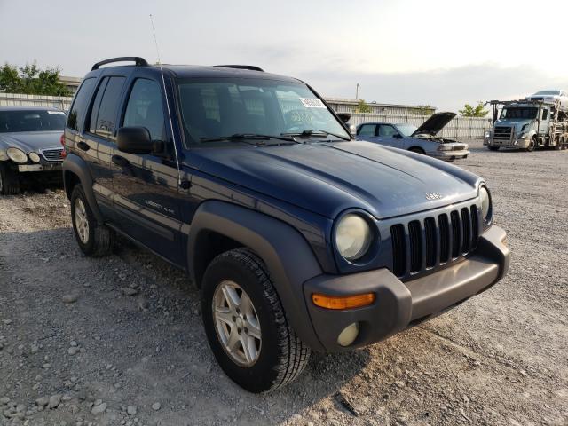 1J4GL48K63W612802-2003-jeep-liberty