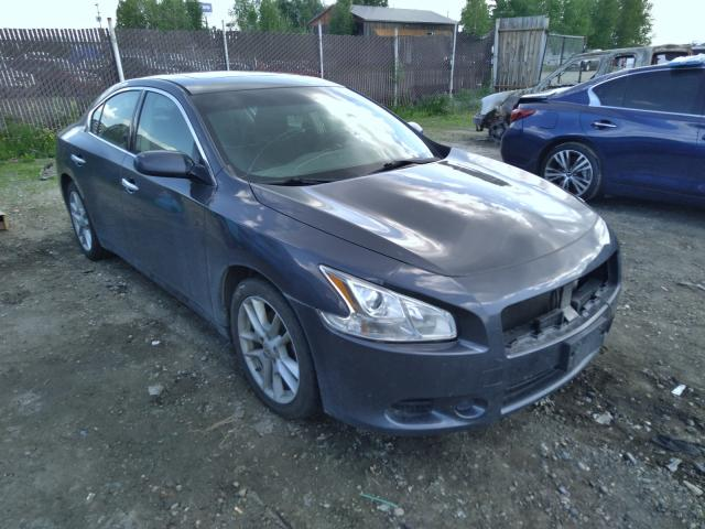 Salvage cars for sale from Copart Anchorage, AK: 2010 Nissan Maxima