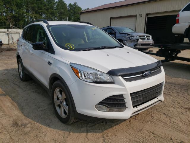 Salvage cars for sale from Copart Seaford, DE: 2015 Ford Escape SE