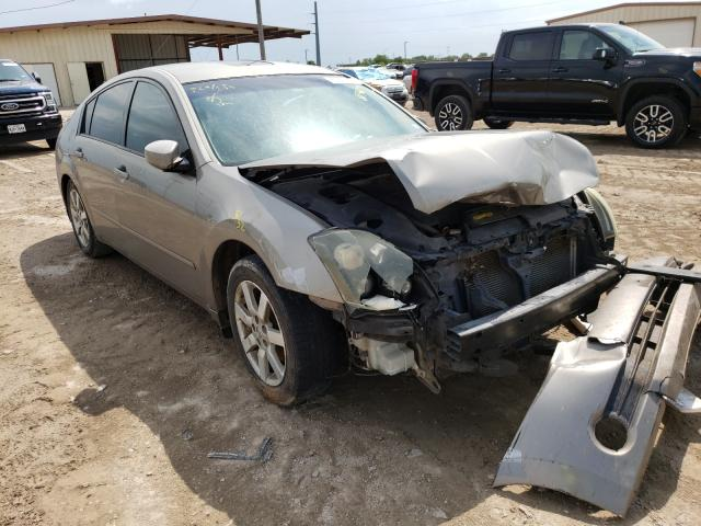 Salvage cars for sale from Copart Temple, TX: 2006 Nissan Maxima SE