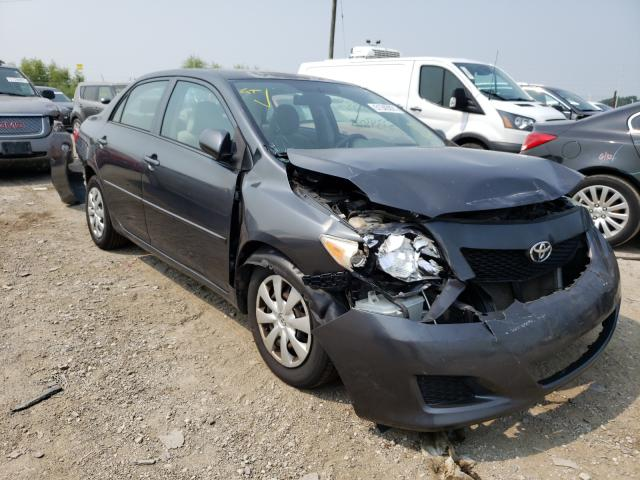 Salvage cars for sale at Indianapolis, IN auction: 2010 Toyota Corolla BA