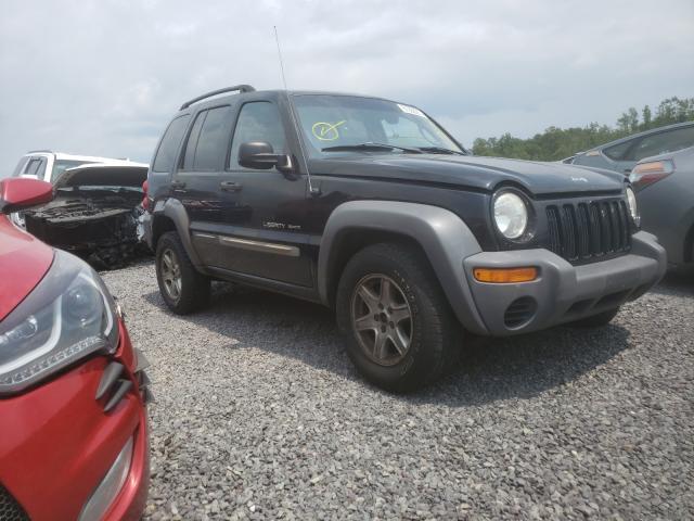 Vehiculos salvage en venta de Copart Fredericksburg, VA: 2003 Jeep Liberty