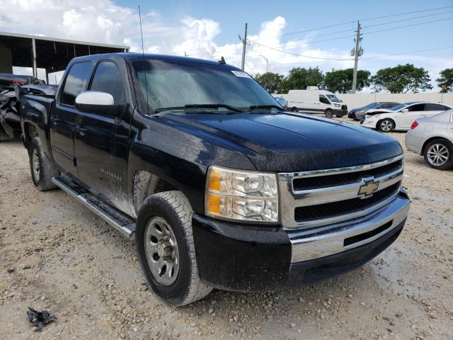 Salvage cars for sale from Copart Homestead, FL: 2010 Chevrolet Silverado