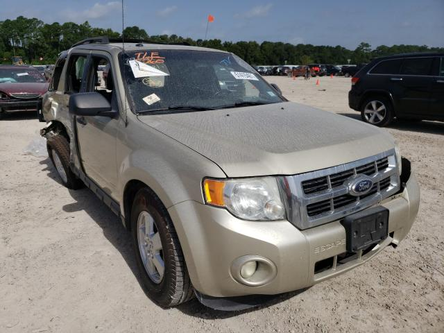 Salvage cars for sale from Copart Houston, TX: 2012 Ford Escape XLT