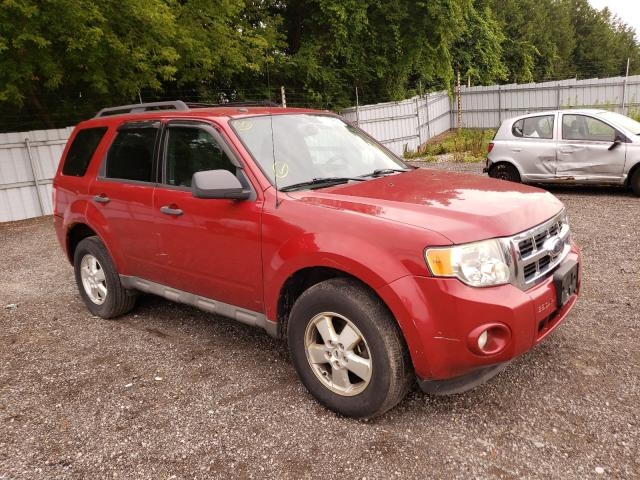 Salvage cars for sale from Copart London, ON: 2009 Ford Escape XLT