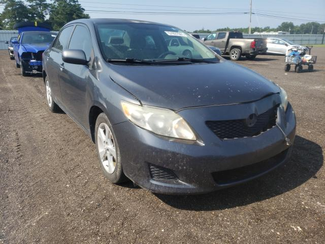 Salvage cars for sale from Copart Newton, AL: 2009 Toyota Corolla BA