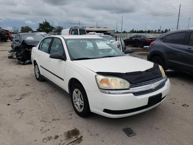 Salvage cars for sale from Copart Riverview, FL: 2004 Chevrolet Malibu
