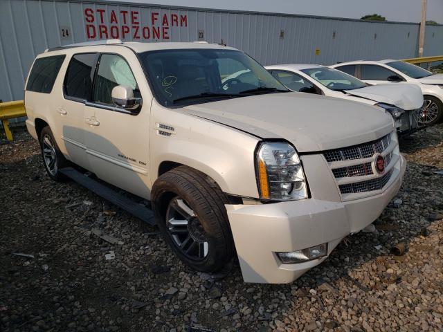 Cadillac Vehiculos salvage en venta: 2013 Cadillac Escalade E