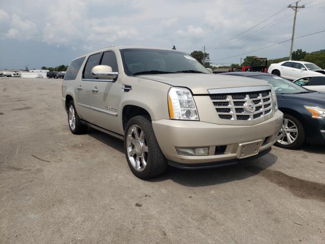 Cadillac Vehiculos salvage en venta: 2011 Cadillac Escalade E