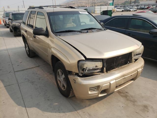 Vehiculos salvage en venta de Copart Farr West, UT: 2006 Chevrolet Trailblazer