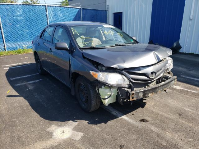 Salvage cars for sale from Copart Moncton, NB: 2011 Toyota Corolla BA