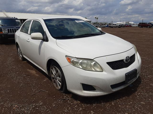 Salvage cars for sale from Copart Phoenix, AZ: 2009 Toyota Corolla BA