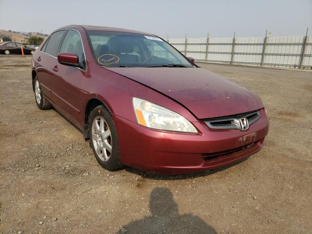 Salvage cars for sale from Copart San Martin, CA: 2005 Honda Accord EX