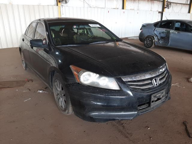2011 Honda Accord EXL en venta en Phoenix, AZ