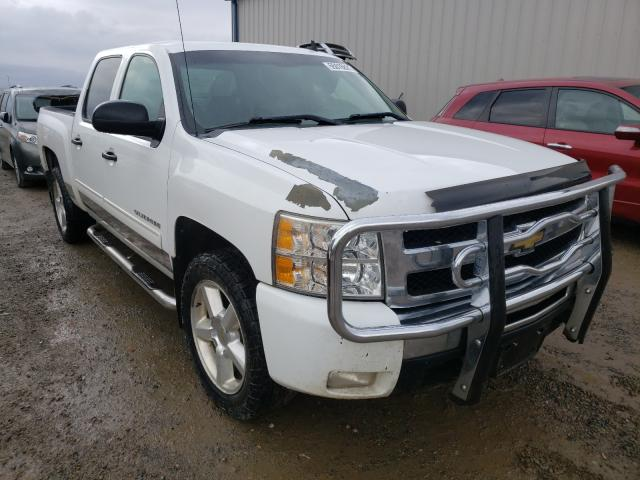 Salvage cars for sale from Copart Helena, MT: 2010 Chevrolet Silverado