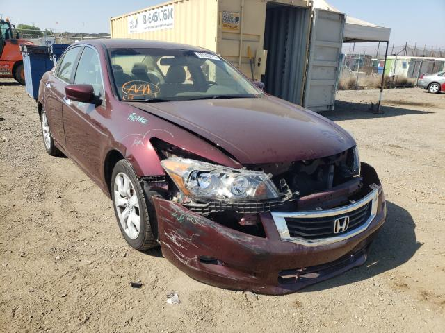 Salvage cars for sale from Copart San Martin, CA: 2008 Honda Accord EXL