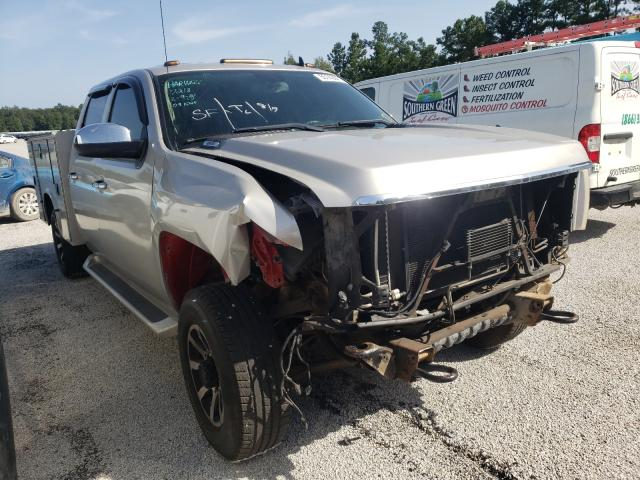 Salvage cars for sale at Harleyville, SC auction: 2009 Chevrolet Silverado
