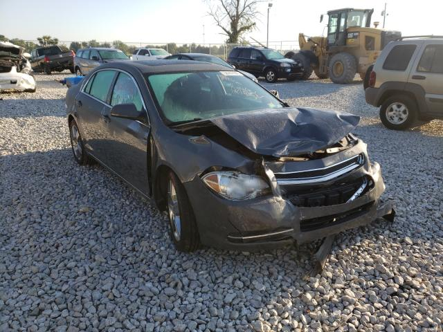 Salvage cars for sale from Copart Cicero, IN: 2009 Chevrolet Malibu 1LT