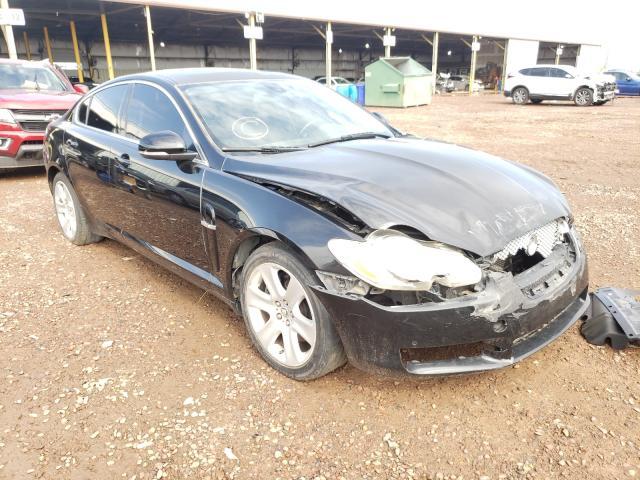 Salvage cars for sale from Copart Phoenix, AZ: 2010 Jaguar XF Luxury