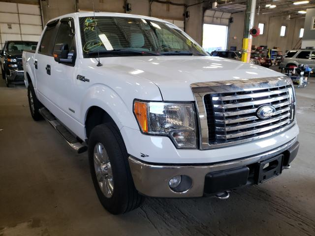 Salvage cars for sale from Copart Blaine, MN: 2011 Ford F150 Super
