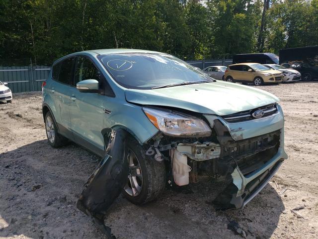 1FMCU9HX4DUD46750-2013-ford-escape