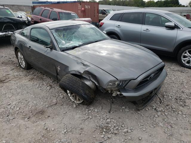 2013 FORD MUSTANG 1ZVBP8AM3D5247135