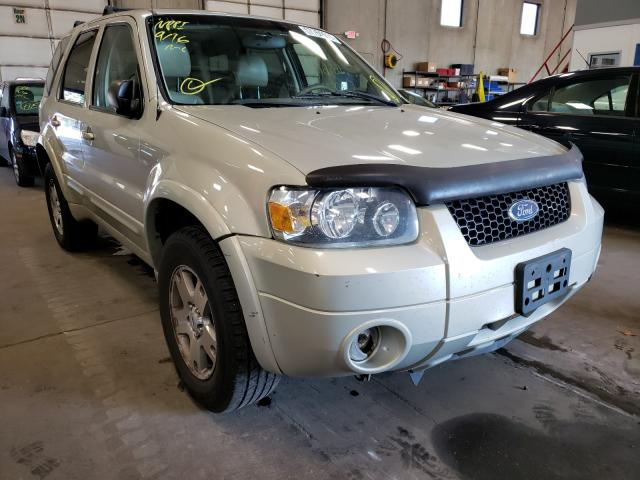 Salvage cars for sale from Copart Blaine, MN: 2005 Ford Escape LIM