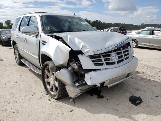Cadillac Escalade salvage cars for sale: 2010 Cadillac Escalade