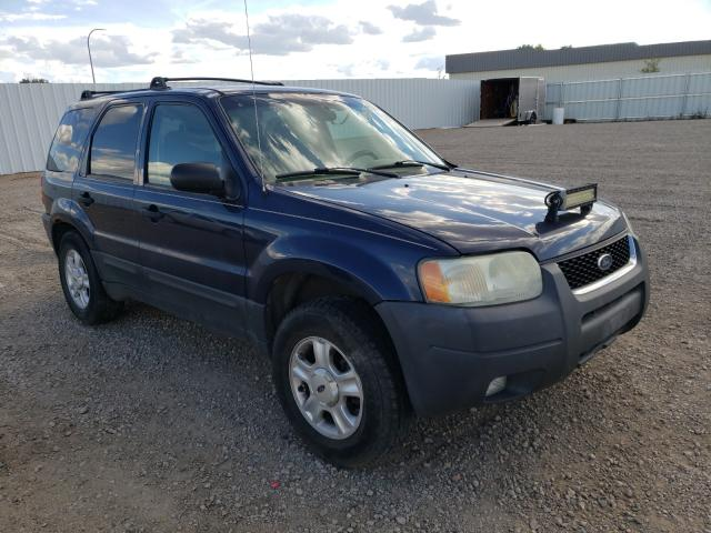 Vehiculos salvage en venta de Copart Bismarck, ND: 2004 Ford Escape XLT