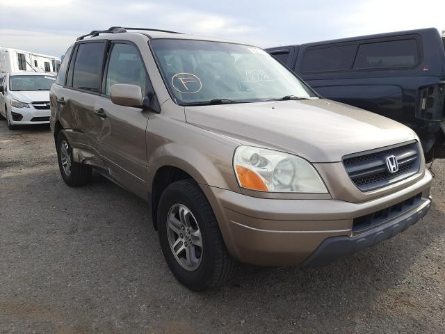 Salvage cars for sale at Tucson, AZ auction: 2004 Honda Pilot EX