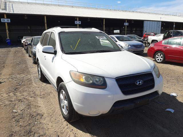 Salvage cars for sale from Copart Phoenix, AZ: 2007 Hyundai Santa FE G