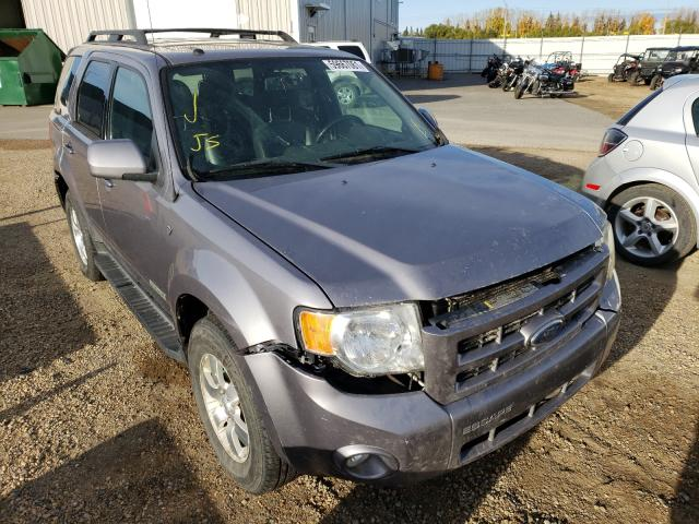 Salvage cars for sale from Copart Nisku, AB: 2008 Ford Escape LIM