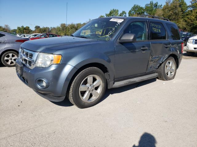2011 FORD ESCAPE XLT 1FMCU0D79BKB13344