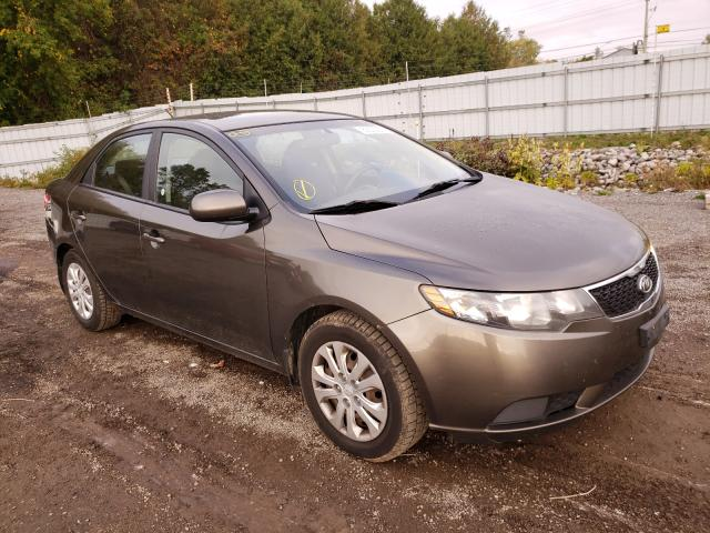 Salvage cars for sale from Copart London, ON: 2011 KIA Forte LX