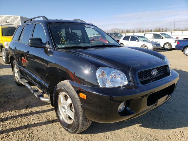 Hyundai Santa FE salvage cars for sale: 2004 Hyundai Santa FE